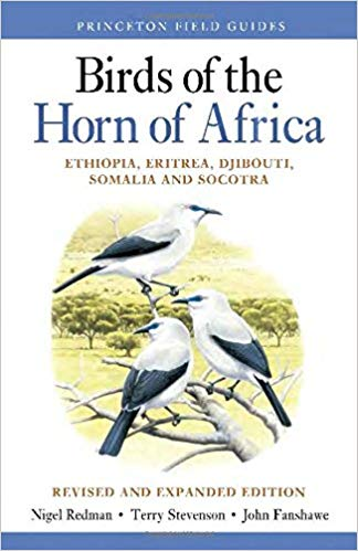 birds-horn-africa.jpg