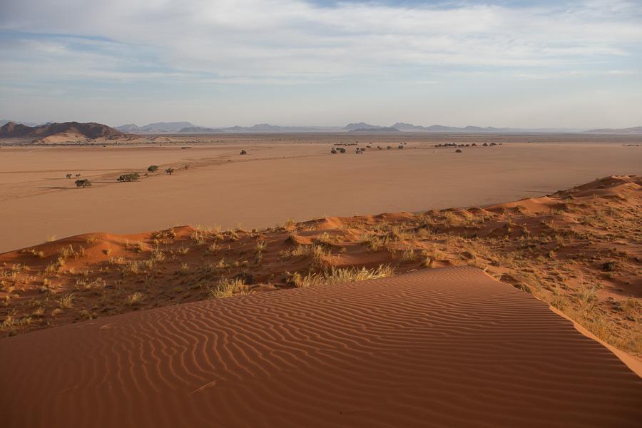 dune-1627.jpg