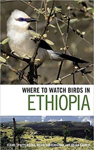 were-watcbirds-ethiopia.jpg