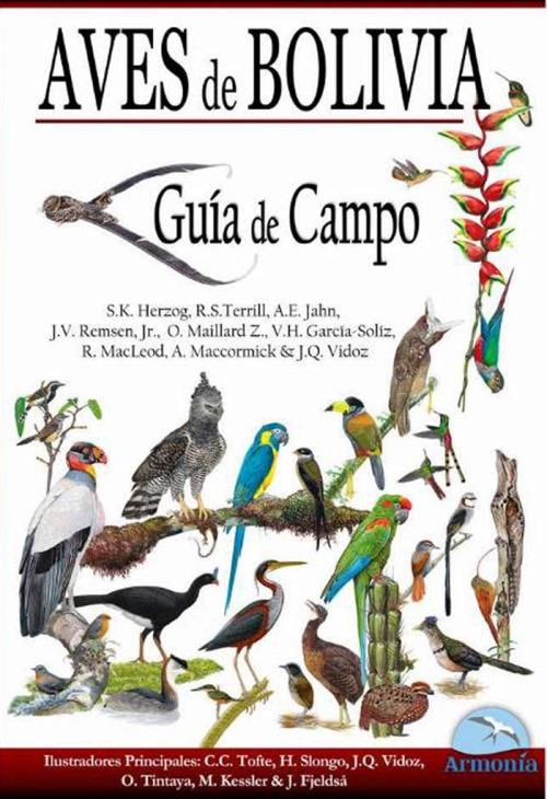 Aves-de-Bolivia.jpg